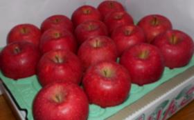 「摘みたてりんご」+ぶどう畑にお名前の刻印