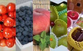 「贅沢な果実・農産物セット」+ぶどう畑にお名前の刻印