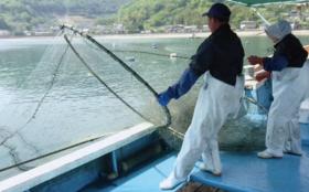 漁業体験と漁師飯コース
