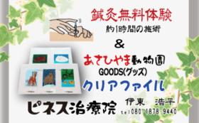 鍼灸無料体験チケット&旭山動物園グッズ1点(クリアファイル)