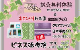 鍼灸無料体験チケット&旭山動物園グッズ2点(クリアファイル・日本てぬぐい)