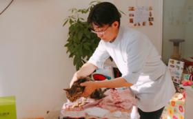JAPAN ANIMAL HOSPITAL サポーターコース