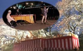 【H】参加型:5組限定:桜床でのコンサートを特等席で楽しもうコース!
