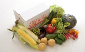 「ニセコエクスプレス/山線写真集」+ニセコの野菜詰め合わせ