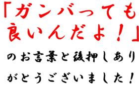ばあちゃん応援コース