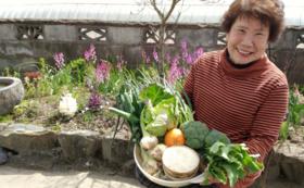 ばあちゃんが作った旬の野菜の詰めAWAせコース