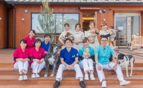 【企業様におすすめ】JAPAN ANIMAL HOSPITAL ゴールドパートナー