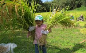 サシバの里の自然と暮らし体験コース