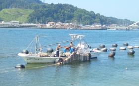 石巻の水産加工品セット(大)