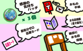 【30名限定】殺処分ゼロ全力応援Fコース
