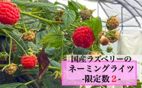 ラズベリー品種のネーミングライツ