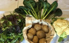 無農薬野菜または加工品