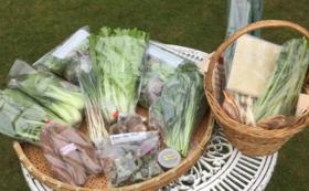 無農薬野菜と加工品の詰め合わせ