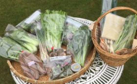 無農薬野菜と加工品の詰め合わせ(2回)