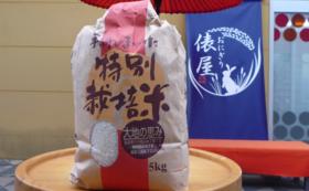 特A 鳥取県産「きぬむすめ」5kg