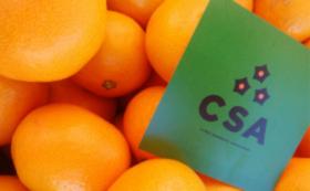 【柑橘ソムリエ シルバーサポーター】あなたはもうほとんど柑橘ソムリエ!