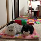 yukino&ku