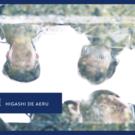 HIGASHI DE AERU 呼び水プロジェクト