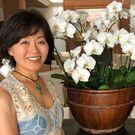Yoko Koike