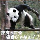 太田 信知