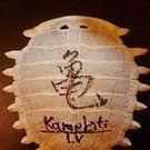 Kinoshita Kamekiti-tv Kanako