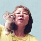 ベビーキャットレスキュー 代表 菊地 裕子