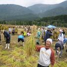 NPO法人鳴子の米プロジェクト(理事長):上野健夫
