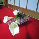 Yuko Ishimoto