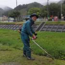 釜石原木椎茸再生プロジェクト代表古川文恵