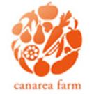 canarea farm(佐々木 攻)