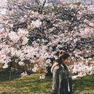 JJane Zhou