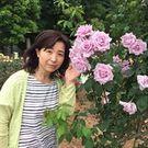 夏目 綾子