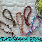 TATEYAMA-PONY