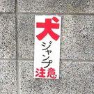 松田 ポン太