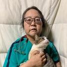 山田千恵子(訪問動物診療所ホープフル  院長)