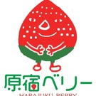 いちご農業法人Berry Good farm株式会社