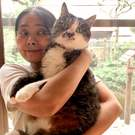 柳沢由美子 保護猫カフェ「和猫かふぇ」店主