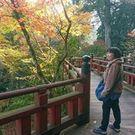 谷村由美子