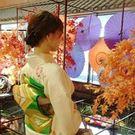 Yoko Ishikawa