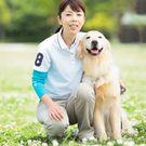 (一般社団法人ドッグフォーライフジャパン)代表 砂田眞希