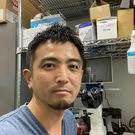 伊藤 直樹(北里大学 東洋医学総合研究所)