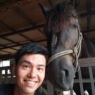 山下 勉(VEN)   SHARE HORSE ISLAND