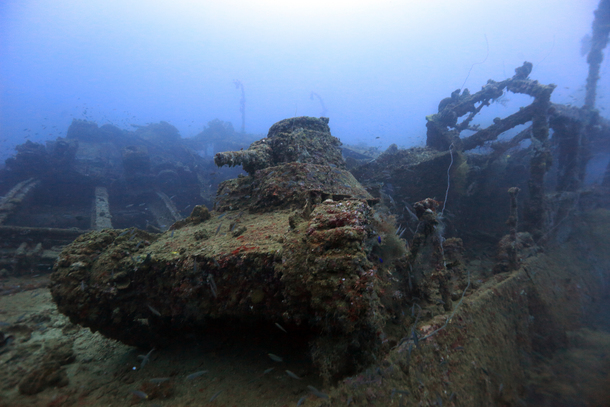 ビキニ環礁の画像 p1_38